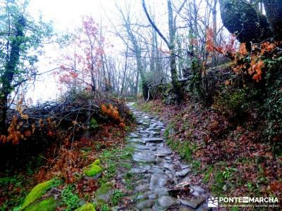 Valle del Ambroz-Sierra de Bejar - Gredos; excursiones;berrea monfrague